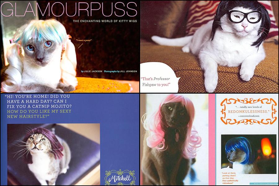 Glamourpuss: The Enchanting World of Kitty Wigs
